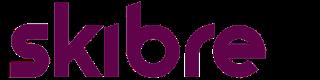 footer logo skibre
